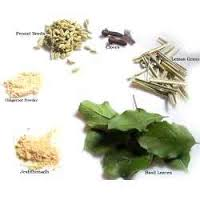 Herbs added to Kadha in Ayurveda