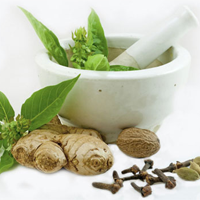 ayurvedic treatment herbs in kerala